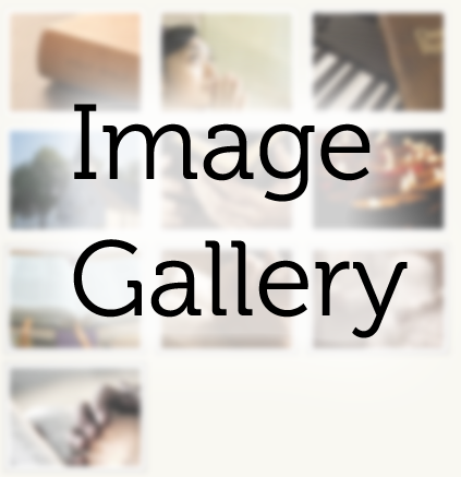 imagegallery